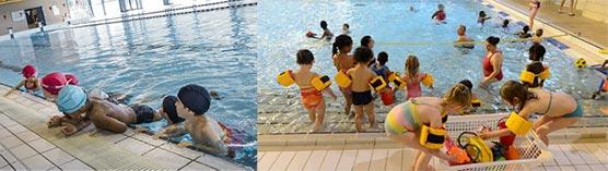 natation scolaire tout savoir 2020